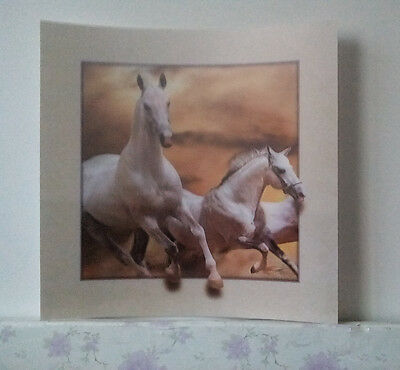 white horse 5D Lenticular  Holographic Stereoscopic Picture Wall Art