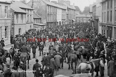 RP REPRO- wales # lampeter horse fair