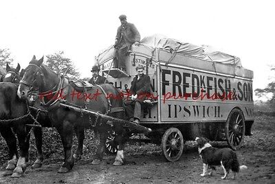 RP REPRO # horse drawn ipswich removals van