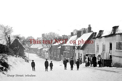 RP REPRO # buckingham # winslow # sheep st in snow