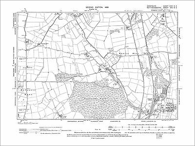 Nether Langwith, Colliery, Whaley (Derby), old map Nottinghamshire 1899: 17NE