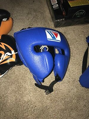 FG2900 Winning Headgear Blue (Medium)