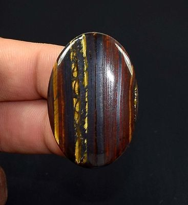 Natural Multi Iron Tigers Eye 63.9Ct Very Beautiful Oval Cabochon Gemstone Loose