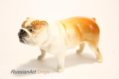 English bulldog dog porcelain figurine statue