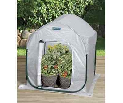 Small Pop-Up Collapsible Metal Greenhouse Plant Enclosure Garden Planthouse Lawn