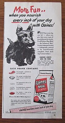 1942 French Canadian  Scotty Scottish Terrier Dog Gaines Meal