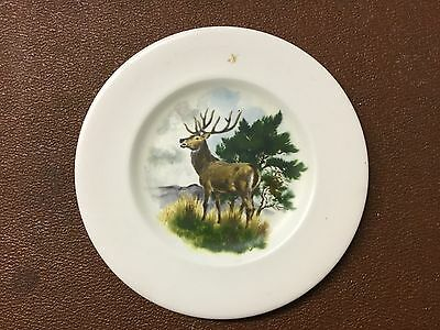 Axe Vale Pottery Dish Devon Collectable Dish