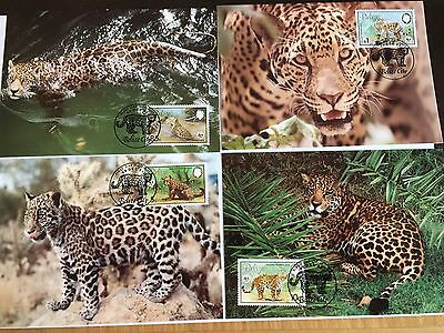 BELIZE WWF MAXIMUM CARDS x 4 1998 JAGUAR CATS