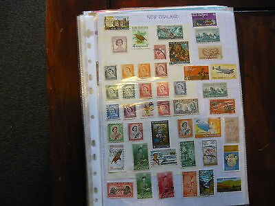 A Good Selection Of New Zealand Stamps....six Pages...geo.v..vi ..victoria