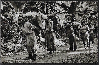 Guatemala - Indios cargando bananos. Real photo.