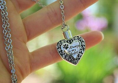 Pet Cremation Jewely Pendant Urn Ashes NECKLACE Always in My Heart Cat Dog Paw