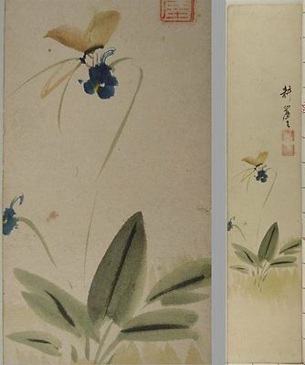 YL19 TANZAKU Butterfly Bug Animal Flower Japanese Art painting Nihonga Picture