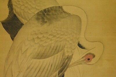 Hanging Scroll Picture Japanese Painting Crane Japan Antique Kakejiku art a875