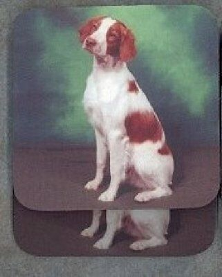 BRITTANY SPANIEL Rubber Backed Coasters #0673