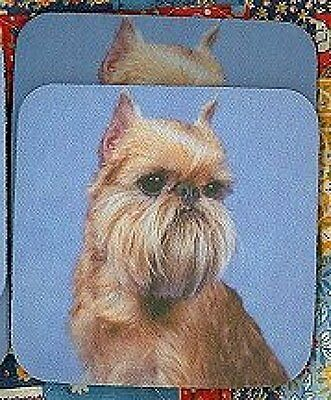 BRUSSELS GRIFFON  Rubber Backed Coasters #0605