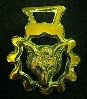 Vintage FOX HEAD IN WIDE SCALLOPED FRAME Horse Harness Brass from England RARE!