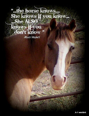 "Ray Hunt  horse  quote  refrigerator magnet 2 1/2""X 3 1/4 """