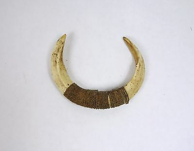 An Old Rare Boar Tusk Ornament from New Guinea