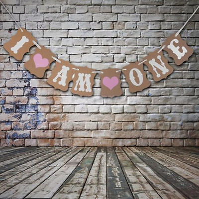 Vintage I Am One 1st Birthday Party Bunting Banner boy Girl Baby Shower Decor