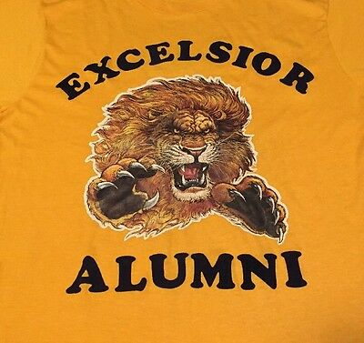 Vintage 80s EXCELSIOR ALUMNI Screenstar 50/50% Cotton/Poly Thin T Shirt. Size L