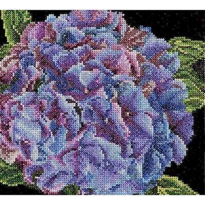 "Hydrangea On Aida Counted Cross Stitch Kit 5.75""X5.5"" 18 Count 499994662392"