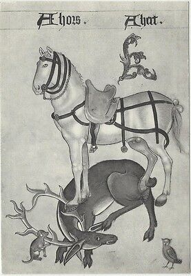 Horse Postcard: Horse and a hart (Stag)