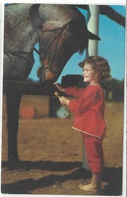 Horse Postcard: Court Young Girl and Roan