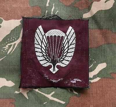 Norway Parachute School Badge