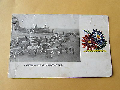 Vintage North Dakota Sherwood Marketing Wheat  Post Card U.S.A