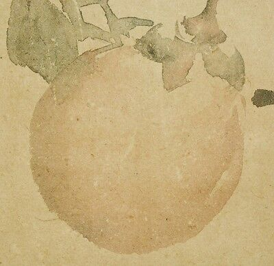 Hanging Scroll Japanese Painting Persimmon Japan Antique Picture Art Old b477