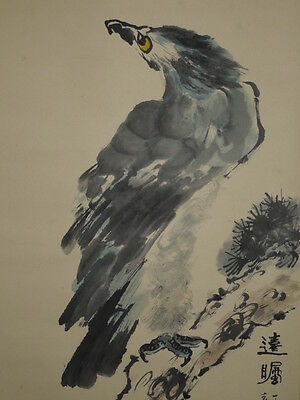 Hanging Scroll Chinese Painting Eagle Asian Art Antique Picture ink China m04