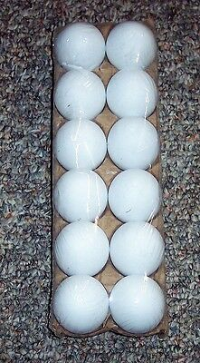 12 White Plastic Fake Faux Decorative Eggs Dyeable Markable 4 Crafts Party Favor