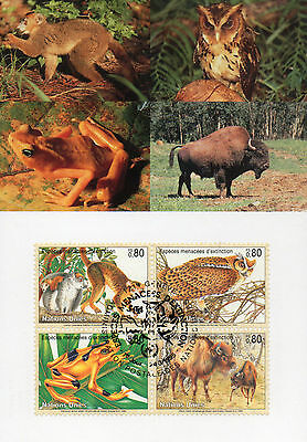 Maximum  Maxi  Card  Species Of Extinction   1995.. Lovely  Clean Condition