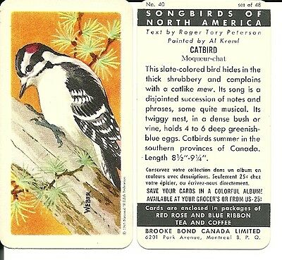Brooke Bond Canada -  Songbirds of N.America  card set  {48} 'Save' variation