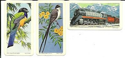 Brooke Bond Canada - Tropical Birds card lot  #21 & 35 - TLR variation