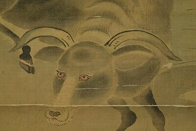 Hanging Scroll Japanese Painting buffalo Cow Kano Cherry Ink Old Antique 狩野 z12