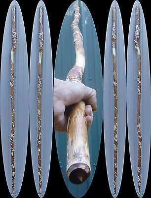 """6' 2"""" Awesome Walking Hiking CANE Vine Twisted Ash Wood Wizard Staff Real Wood !"""