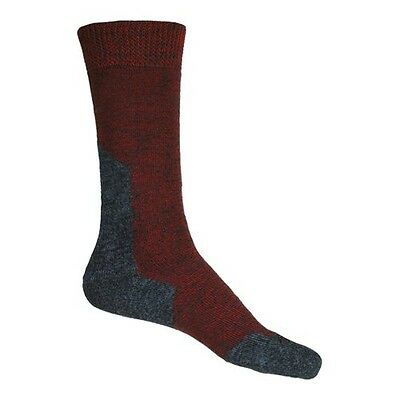 Coolmax Wool Boot Length Technical Socks Size 3 to 5.5 Dark Red. Free Shipping