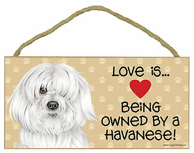 Love is ... Being Owned By a Havanese Wood Puppy Dog Sign Plaque Made in USA