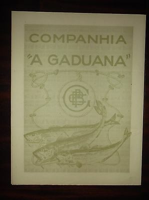 Titles of Shares, Company A Gaduana cod fisheries 1922
