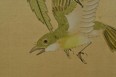 Hanging Scroll Chinese Painting Flower Bird ink Asian Art Pic China Antique v67