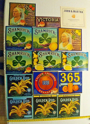 51 different vintage orange citrus crate labels label sets jankie