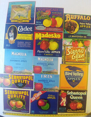 53 different vintage California apples apple crate labels label
