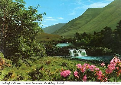 Ireland  -  Leenane - Aasleagh Falls - The head of the great Killary Harbour