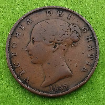 1855 Victoria Young Head Copper Half Penny (F)