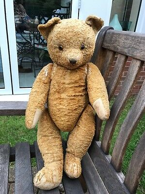 Antique Bear Needs Love And TLC