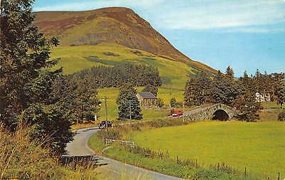 Ben Gulabin Spittal of Glenshee Bridge General view