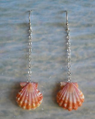Orange & Pink Hawaiian Sunrise Shell Earrings on Pearl Drops & Sterling Sillver