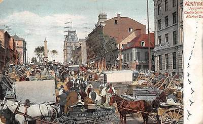 Canada Que. Montreal Jacques Cartier Square Market commerce carriage horse 1905
