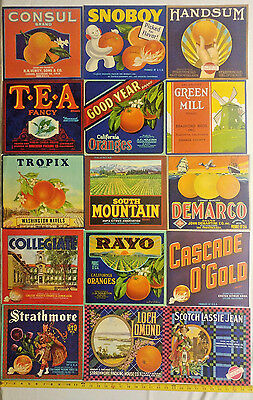 44 different vintage orange citrus crate labels label #3